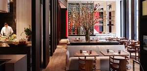 Andaz 5th Ave Boutique Hotel New York City. Midtown Manhattan NYC.